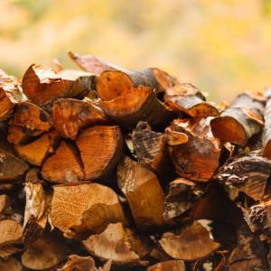 【おすすめ】『焚き火で使う薪の種類』についてまとめてみた