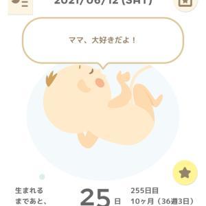 妊婦健診11回目☆36w3d