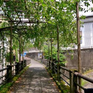 [観光 #07] 京都 今熊野 鳥戸野陵。一条天皇皇后 藤原定子