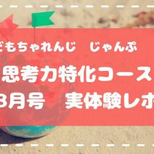 【こどもちゃれんじじゃんぷ】思考力特化コース8月号実体験レポ