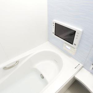 風呂にテレビが付いてる家って勝ち組だよなW