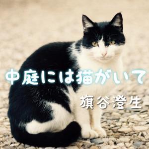 【読み切り】猫で繋がる2人のもどかしい恋物語『中庭には猫がいて』【おすすめ無料漫画】