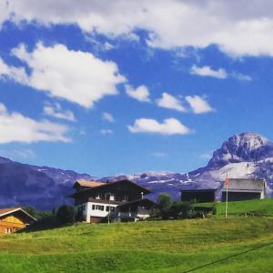 スイスにおける洗濯戦争-Vol.2-