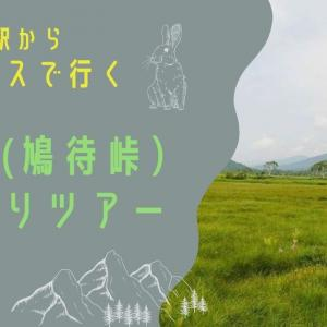 一万円以下で行ける 尾瀬日帰りバスツアー(東京駅朝発 鳩待峠コース )