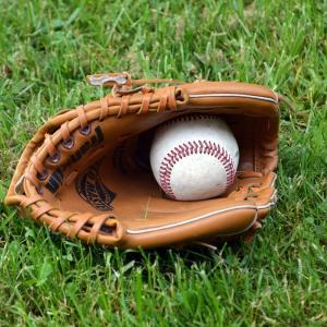 野球が人気の理由