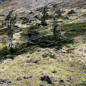 日光白根山に登ってきました