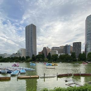 上野不忍池の風景