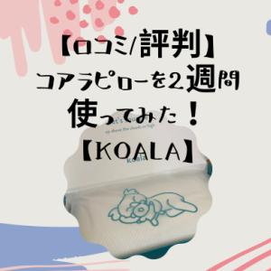【口コミ/評判】コアラピローを2週間使ってみた!【koala】