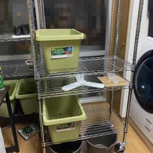 【便利家具】東京での一人暮らしに最適、Amazonの「メタルラック」