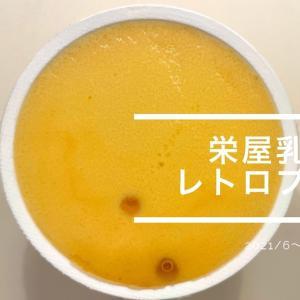 【急上昇中プリンの美味しいわけ】レトロプリン~栄屋乳業~