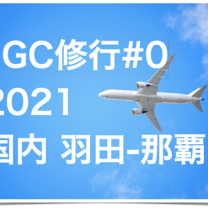 JALのサファイア(JGC)修行0回目〜2021年修行準備|国内旅行#2