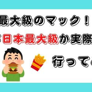 日本最大級のマクドナルド!?何が日本最大級か行ってみた【新潟県上越市】
