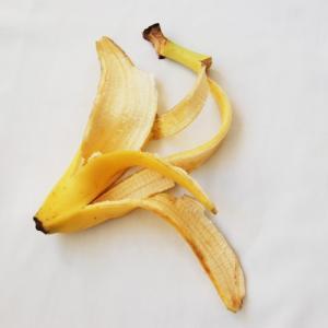ものぐさ流 バナナの皮を肥料にしてみた話