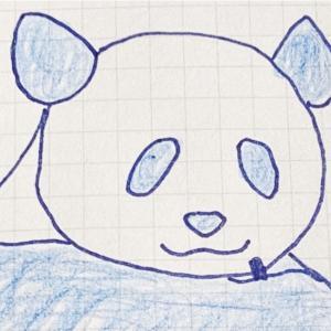 【おめでたい】上野動物園のパンダ「シンシン」が4年ぶりの出産【双子】