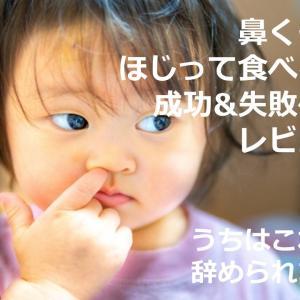子どもの鼻くそをほじって食べる癖を辞めさせる方法成功&失敗体験レビュー