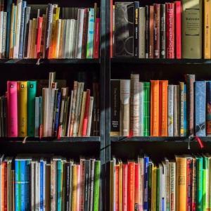 【今、図書館がアツい】電子書籍でどこでも読めていつでも返却!当然無料!!