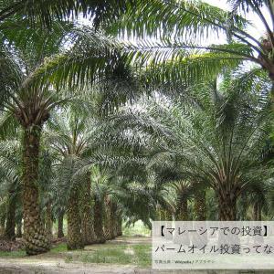 【マレーシアでの投資】パーム油・パームオイル投資って何?