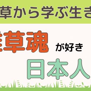 海外で嫌われる「雑草魂」│雑草の生き方に憧れるのは日本人だけ!