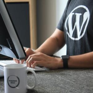 【WordPress (Cocoon v.2.3.0) プラグイン】P3(Plugin Performance Profiler)を入れて大変なことに…