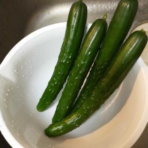 飯がすすむ(キューリのポン酢漬け)