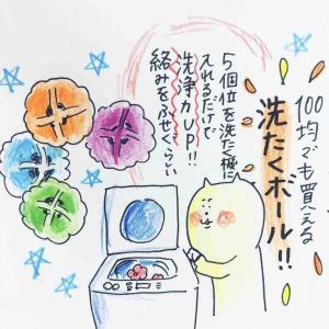 「洗濯ボール」の真の楽しみ方
