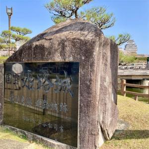 桜/兵庫・姫路城
