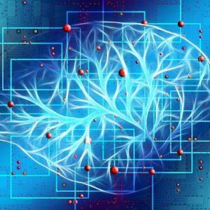 システム英単語シリーズ3冊で攻める脳科学的攻略方法