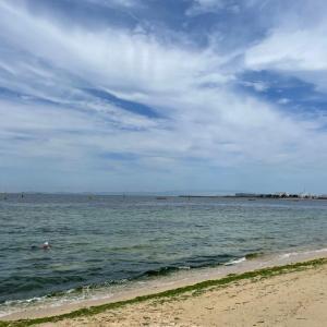 二色の浜 OWS練習会 曇り空の中・・・