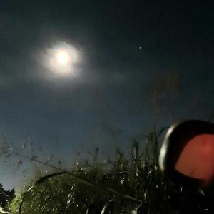 中秋の名月。美しい月に想う。