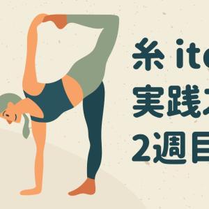 糸-ito 実践スタート!!実はもう2週目です^^