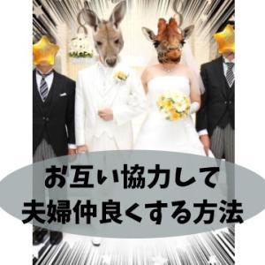 【夫婦協力編】HSP気質の繊細な旦那さんと非繊細な妻の仲良く生活する5つの方法