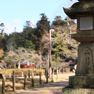 東大寺二月堂(奈良県)とひっそりと現れる鹿の親子