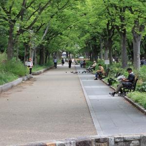 靭公園(大阪府大阪市)と楠永神社