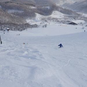スキーの怪我についての記録(その1)