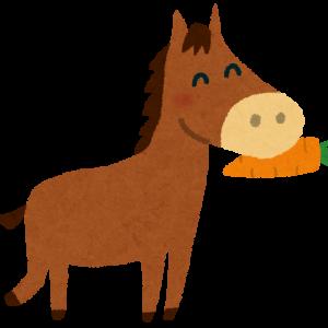 【愛馬近況】グリーンファーム愛馬会…「グロリアスシティ」3ヶ月の離脱へ!