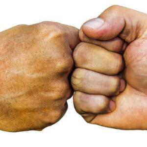 ケンカ最強は圧倒的な強さでボクシングに決定!!