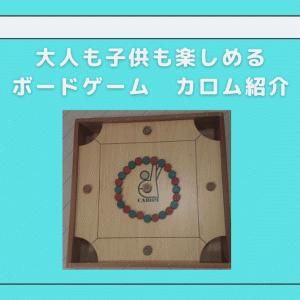 大人も子供も楽しめるボードゲーム「カロム」って知ってる?