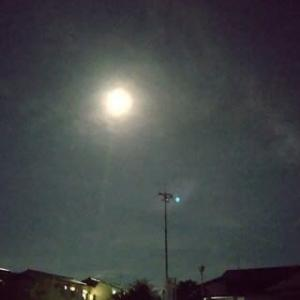 望月の日の月