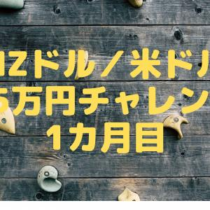 NZドル/米ドル 25万円チャレンジ 1カ月目
