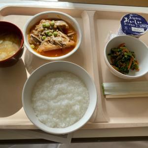 今日からご飯を食べるのだ。