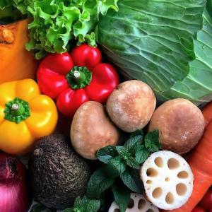 オーガニック野菜、有機野菜、無農薬野菜、何が違う?