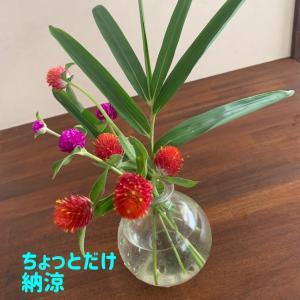 朝活ウォーキングの花摘み