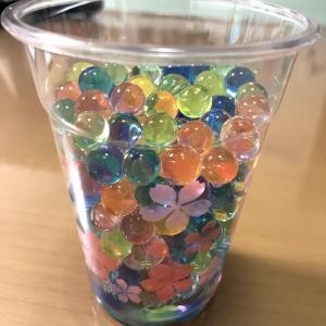 【100円均一】【キャンドゥ】【大きくなる香り玉】おうちでできるプチ研究シリーズやってみました