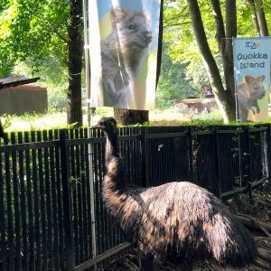 【お出かけスポット】【埼玉】【東松山】埼玉県こども動物自然公園に行ってきました 続き×4