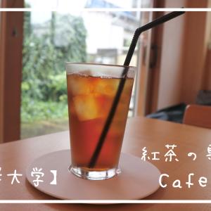 ☕【駒澤大学】居心地抜群◎駒澤にある紅茶専門店「Cafe nt」電源ありの店内で、作業もはかどりそう!