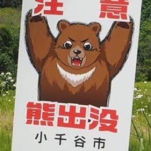 移住して驚いたこと!クマに注意!?