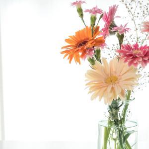 【一人暮らし向け】本当にコスパの良いお花のサブスクはどれ?元花屋バイトが徹底比較します!【保存版】
