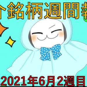 アメリカ株週間報告!6月2週目 CPI上振れ/夏相場は上目線?
