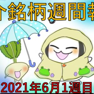 アメリカ株週間報告!6月1週目 ZM/NCNO/DOCU/CRWD決算発表