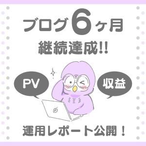 ブログ6ヶ月継続達成!!運用レポート公開!